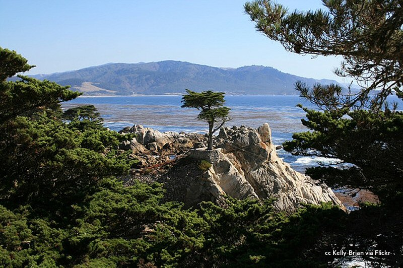 A nice framed view of the lone cypress on a sunny day