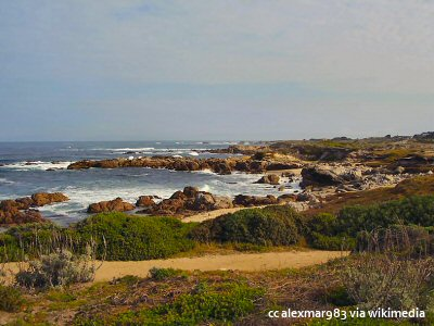 Pathways on Asilomar State Beach on the Monterey Peninsula