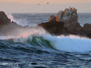 The surf at Asilomar Beach on the Monterey peninsula