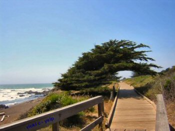 The great boardwalk at Moonstone Beach