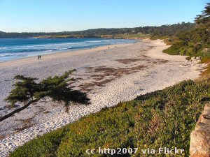 The beach at Carmel-by-the-Sea