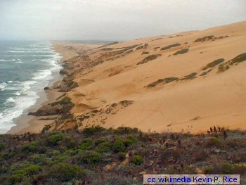 View of the Guadalupe Dunes from Mussel Point
