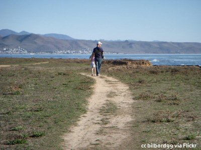 Walking the trail at Estero Bluffs State Park