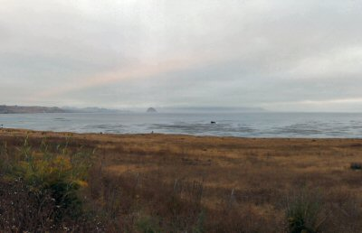 A southerly view of Estero Bluffs State Park with Morro Rock in the distance