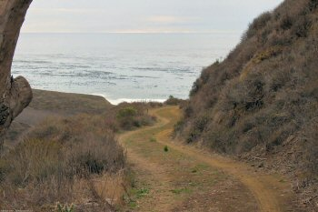 Approaching the ocean from the Harmony Headlands trail