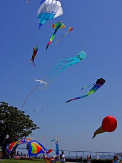 Kite flying at the beach
