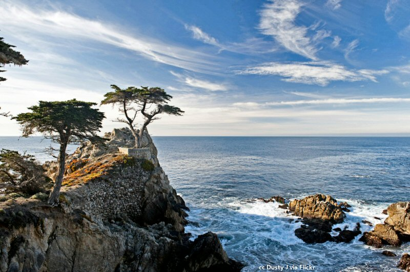 17 Mile Drive A Beautiful Scenic Drive Highlighted By