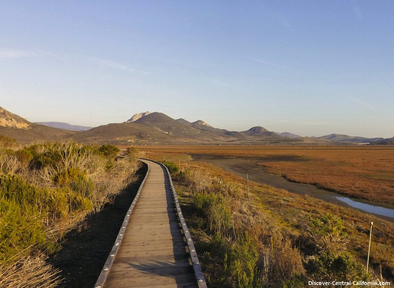 A view to the east over the Morro Bay estuary from the marina boardwalk