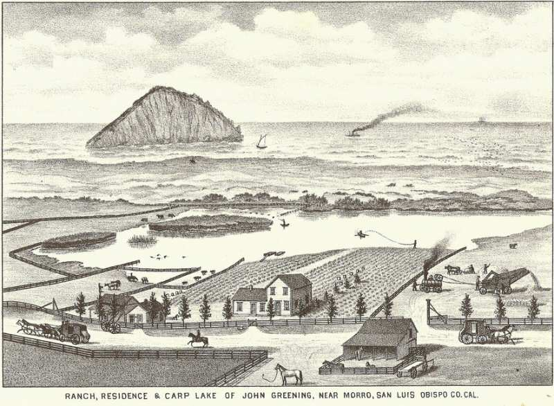 Morro Rock was once an island