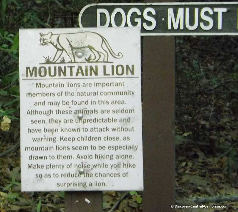 Mountain lion warning at Nojoqui Falls Park