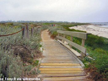 The boardwalk at Asilomar Beach