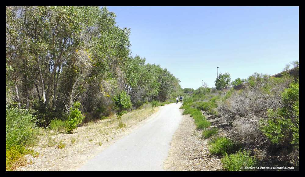 Salinas River Walk looking north