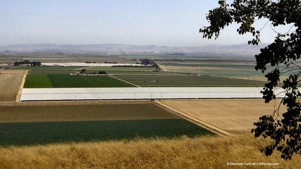 An elevated view of the Santa Maria River valley and crops