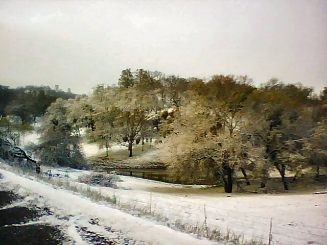 Snow along Vineyard Canyon Road east of San Miguel