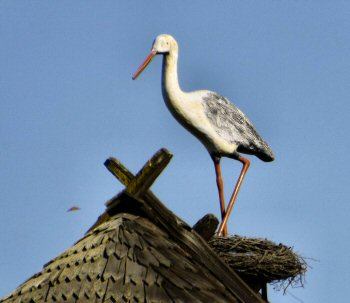 Wooden stork found on a Solvang roof
