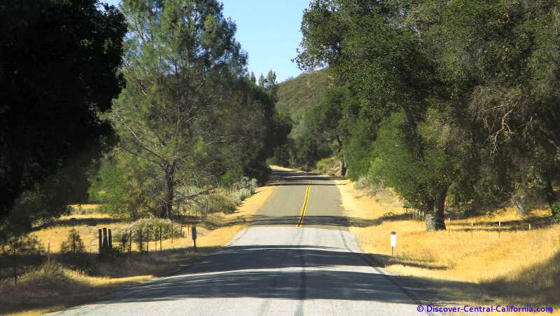 Vineyard Canyon Road - beginning the climb into the Cholame Hills and the Parkfield Valley