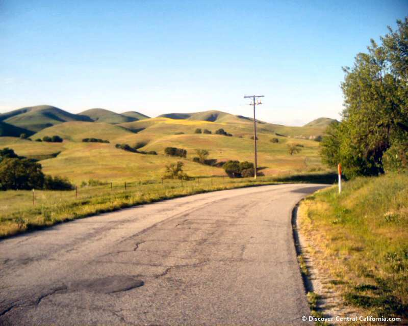 The green hills of spring on Vineyard Canyon Road