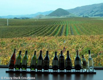central california tasting room and wine bottles