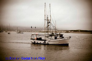 Morro Bay fishing boat