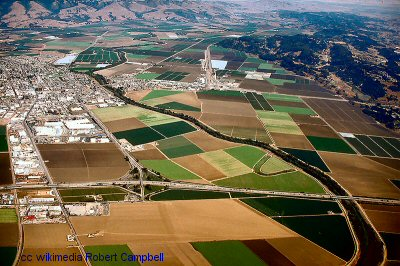 The fields of Watsonville from the air