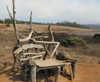 Front view of the bench at Fiscalini Ranch with the hills in the background