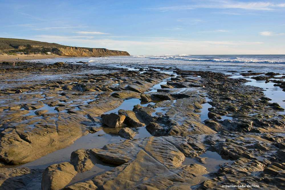 Rocks exposed at low tide
