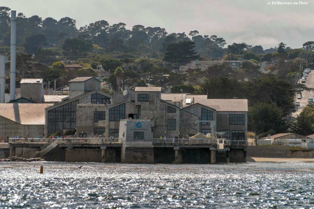 The Monterey Bay Aquarium viewed from offshore