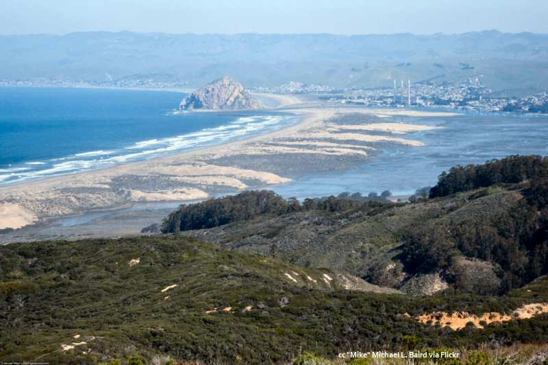 View of Morro Bay and Rock from Montana de Oro State Park