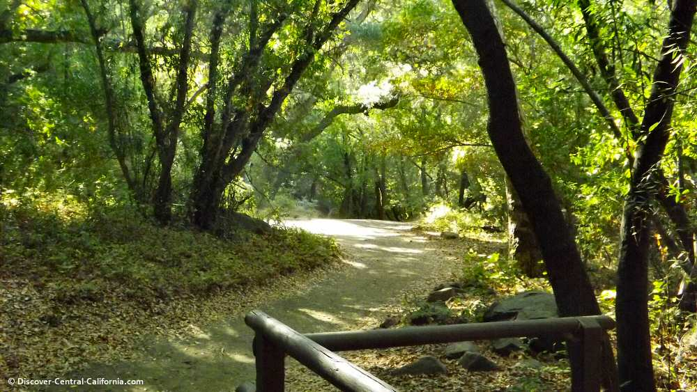 The trail leading up to Nojoqui Falls