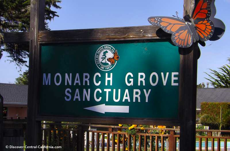 The main monarch grove sanctuary sign on Ridge Road