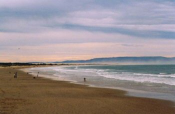 A southerly view of the beach at Pismo
