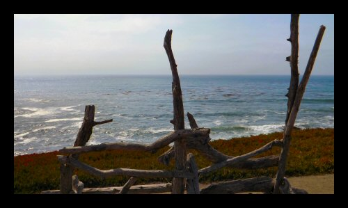 A funky bench overlooking the ocean at the Fiscalini Ranch Preserve in Cambria
