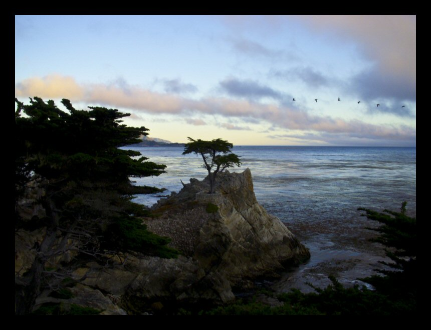 Pastel colors and the Lone Cypress at Pebble Beach