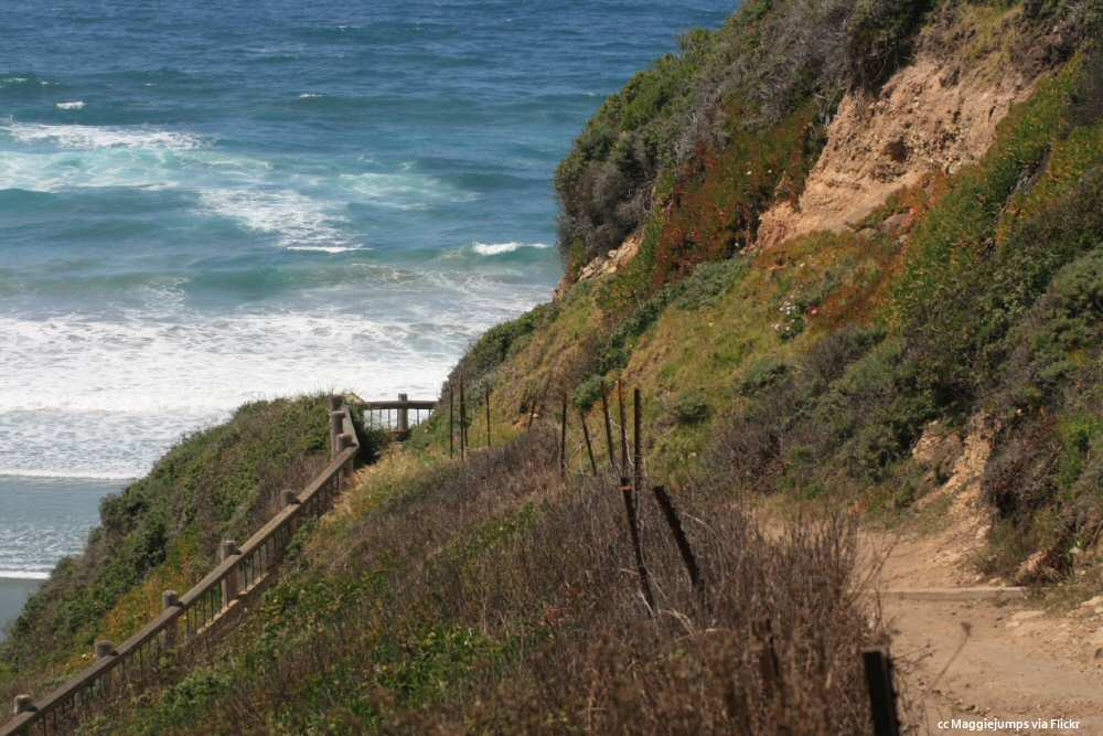 Sand Dollar Beach - path and stairway down to the sand