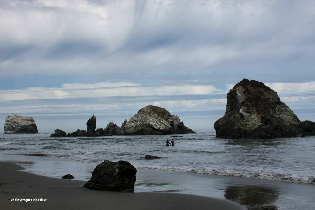 Sea stacks off Sand Dollar Beach