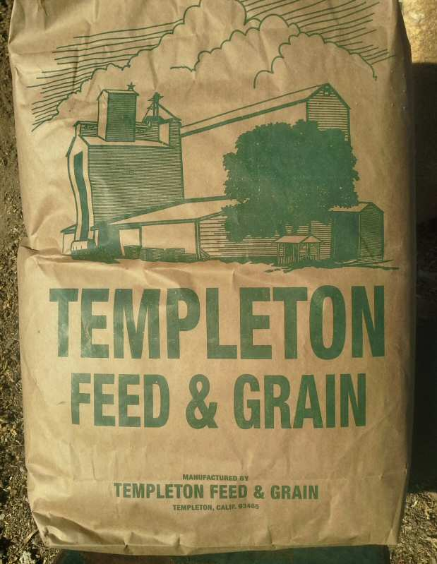 Templeton feed bag